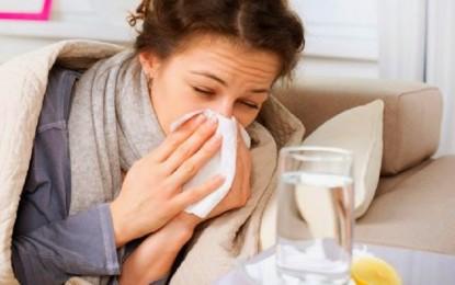 При настинка и бронхит, компрес с извара