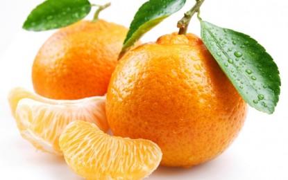 Портокали и мандарини за имунитет
