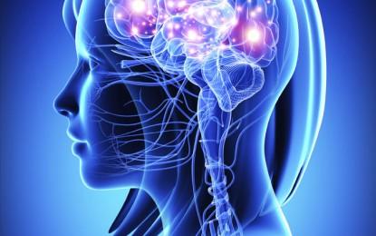 Как да подобрим паметта без лекарства